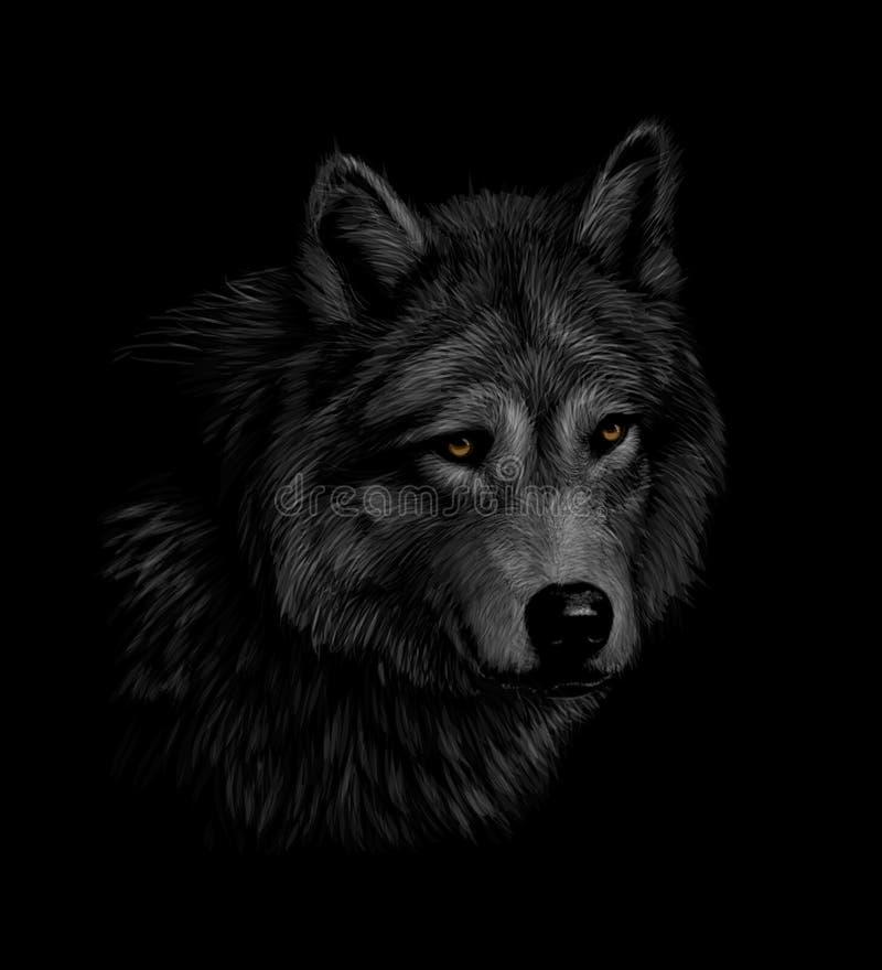 Portrait d'une tête de loup sur un fond noir illustration stock