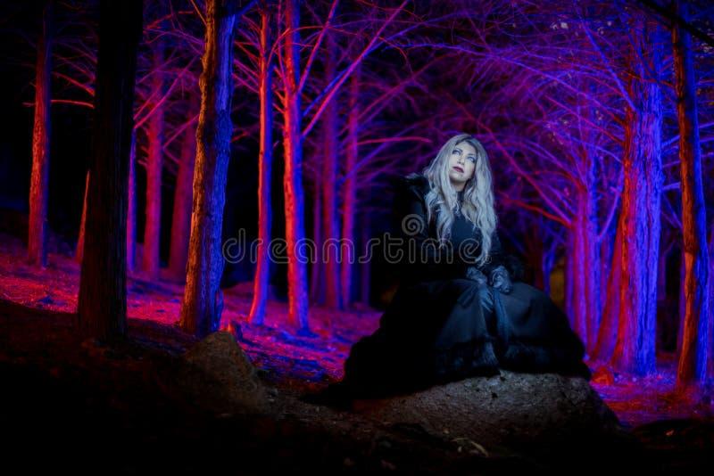 Portrait dans la forêt foncée photos stock
