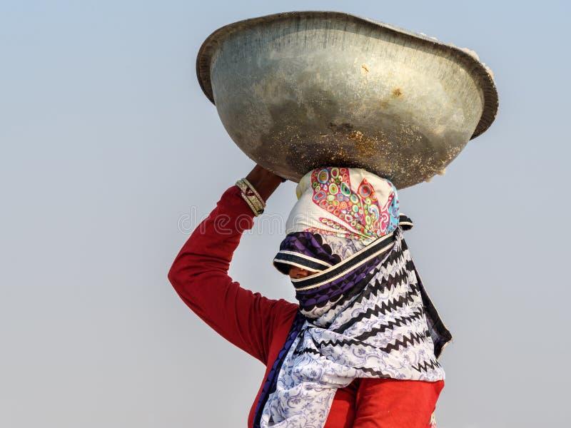 Portrait de bassin de transport de femme indienne avec du sel sur sa t?te sur Sambhar Salt Lake Rajasthan l'Inde images stock