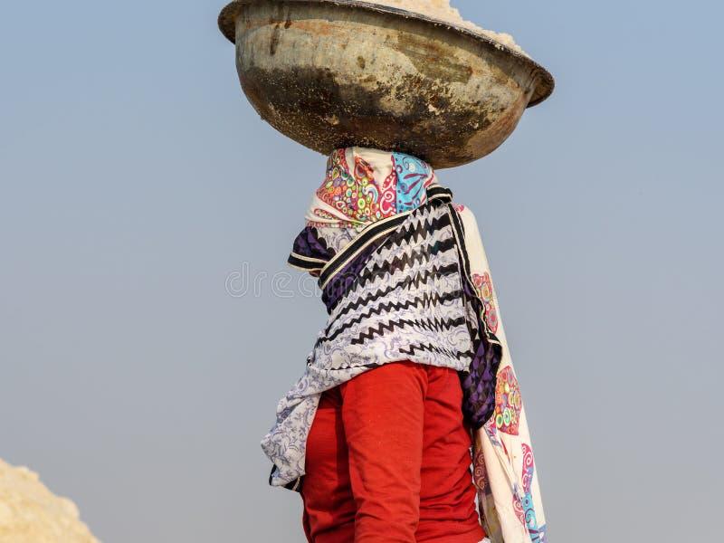 Portrait de bassin de transport de femme indienne avec du sel sur sa t?te sur Sambhar Salt Lake Rajasthan l'Inde photo stock
