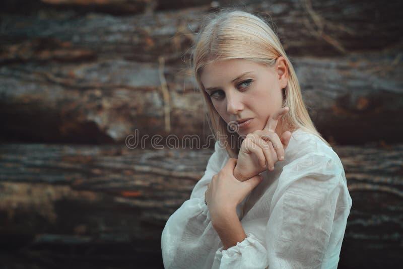 Portrait de beaux-arts de femme blonde image libre de droits