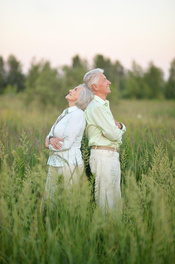 Portrait de beaux couples supérieurs détendant et posant en parc d'été photographie stock