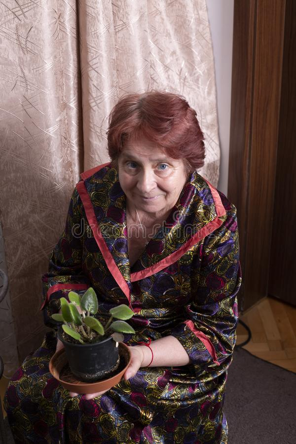 Portrait de belle dame âgée à la maison photo libre de droits