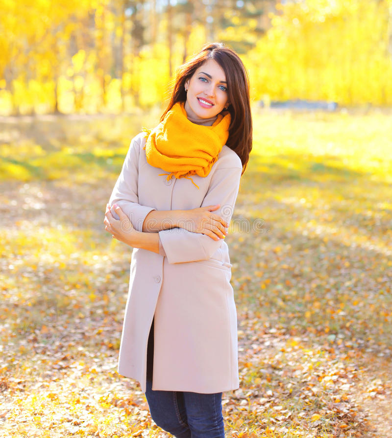 Portrait de belle femme de sourire en automne ensoleillé image stock