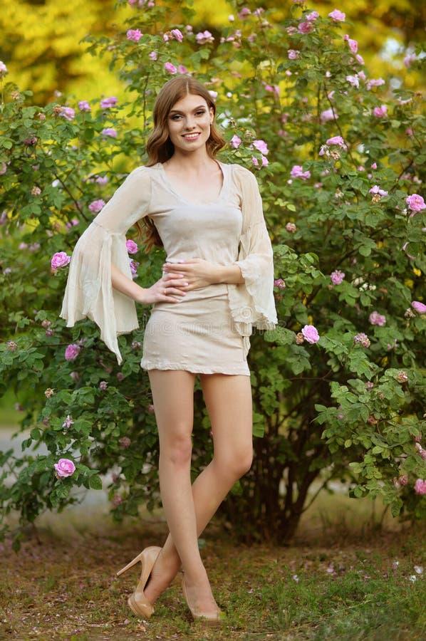 Portrait de belle jeune femme posant par le rosier image libre de droits