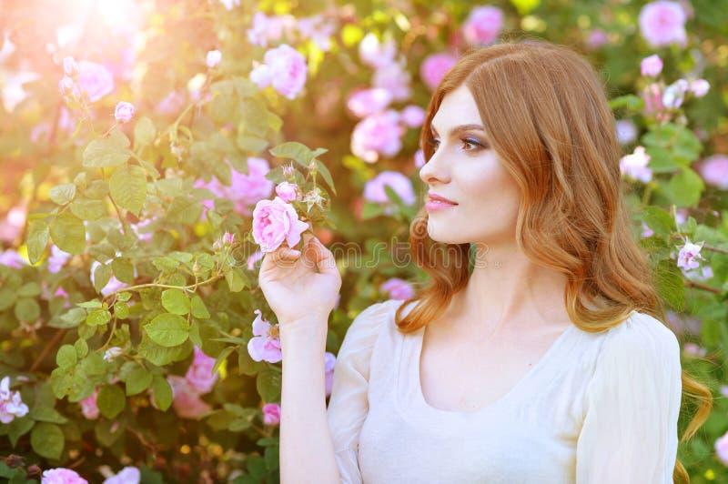 Portrait de belle jeune femme posant par le rosier image stock