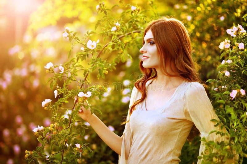 Portrait de belle jeune femme posant par le rosier photos stock