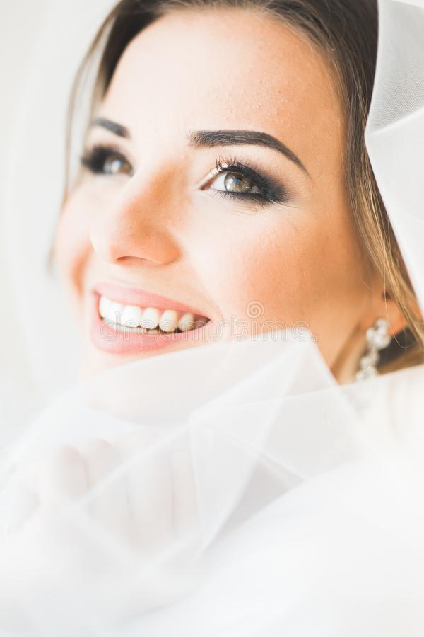 Portrait de belle jeune mariée avec le voile de mode au matin de mariage images stock