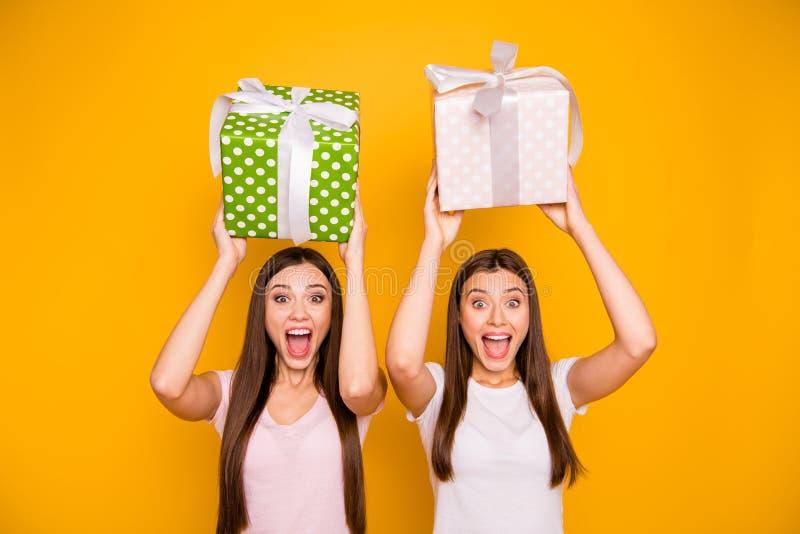 Portrait de belles heureuses filles aux cheveux droits gaies attirantes avec du charme mignonnes jolies se tenant dans des mains  image stock
