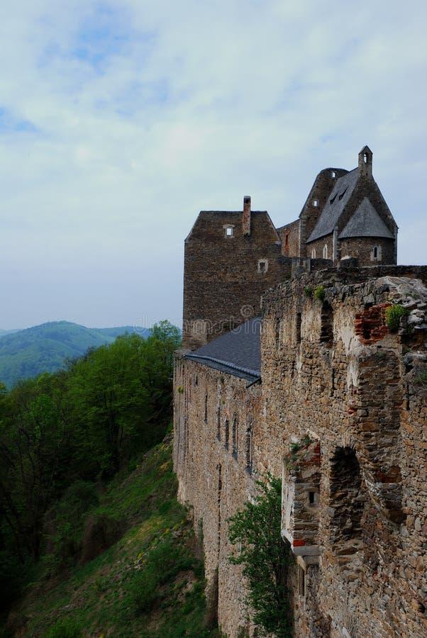 Portrait de château image libre de droits