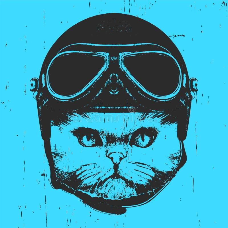 Portrait de chat persan avec le casque de vintage illustration libre de droits