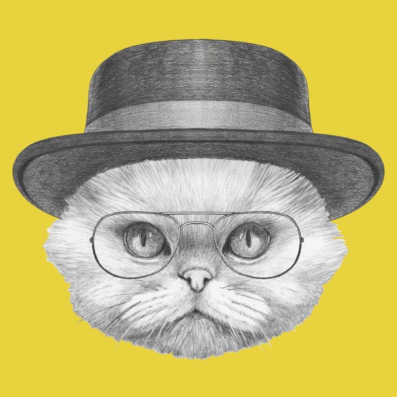 Portrait de chat persan avec les verres et le chapeau illustration de vecteur