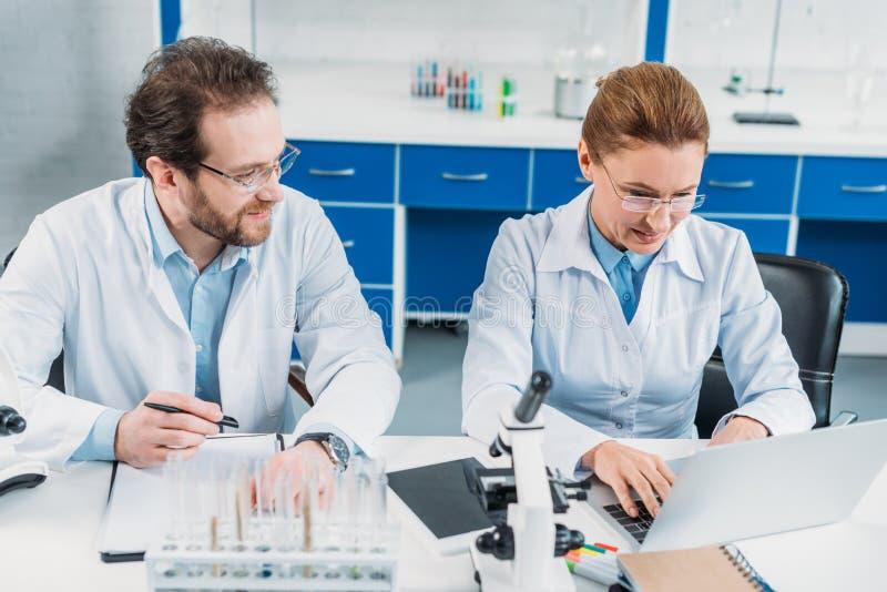 portrait de chercheur scientifique travaillant sur l'ordinateur portable avec le collègue tout près sur le lieu de travail photo stock