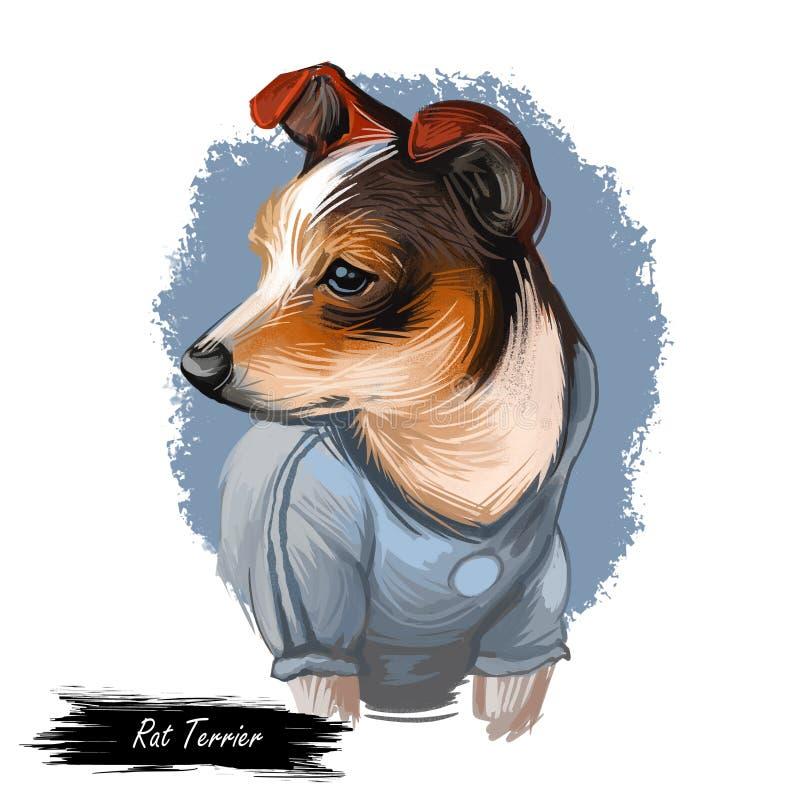 Portrait de chien de Rat terrier d'isolement sur le blanc Illustration d'art de Digital de chien tiré par la main pour le Web, la illustration stock