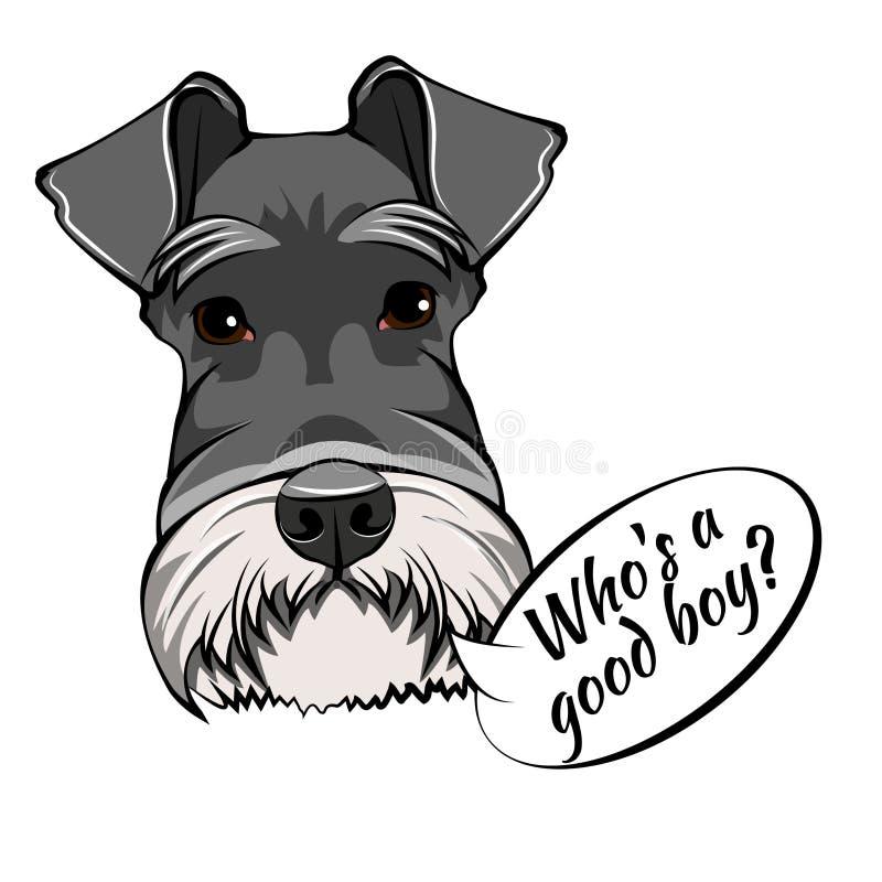 Portrait de chien de Schnauzer Qui est bon lettrage de garçon Race de chien Tête de Schnauzer, visage, museau Vecteur illustration de vecteur