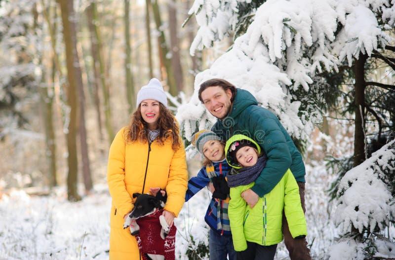 Portrait de famille dans la forêt d'hiver photos stock