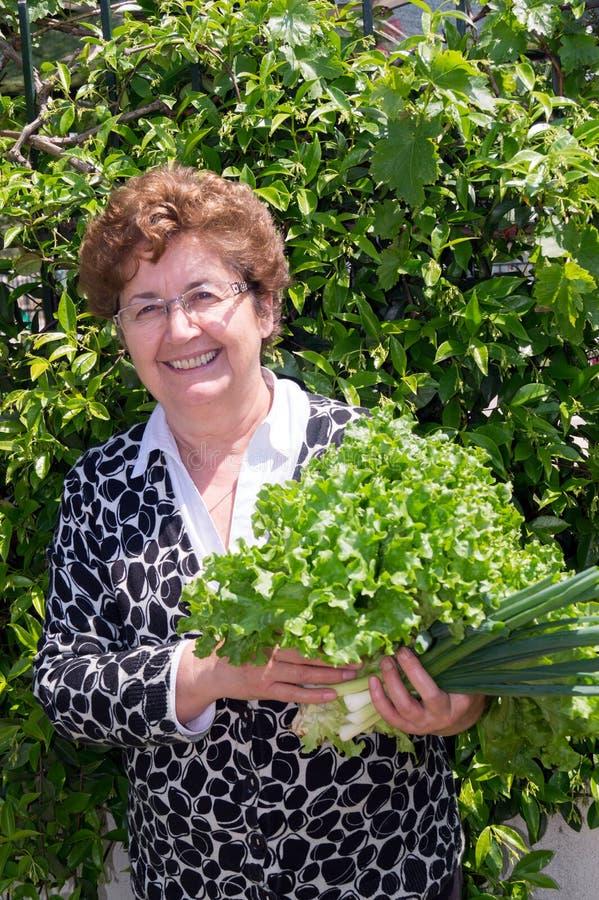 Portrait de femme au foyer heureuse avec le légume frais cru images libres de droits
