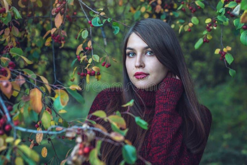 Portrait de femme dans la robe rouge dans le verger foncé de cerise d'automne Concept pour la conception d'art de mode comme fond image stock