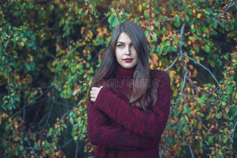 Portrait de femme dans la robe rouge dans le verger foncé de cerise d'automne Concept pour la conception d'art de mode comme fond photo libre de droits