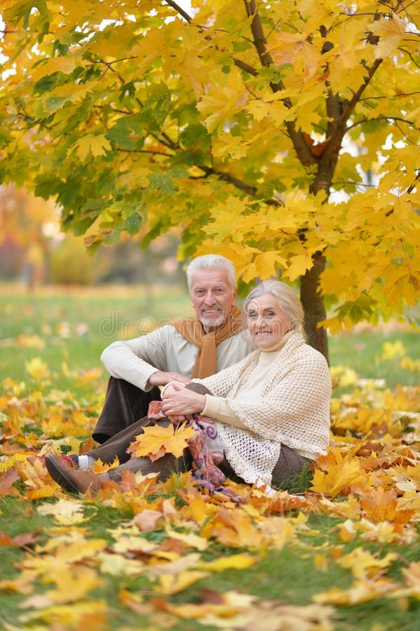 Portrait de femme et d'homme supérieurs heureux en parc photos stock