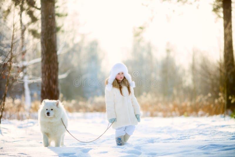 Portrait de fille d'hiver avec le chien de samoyed image libre de droits