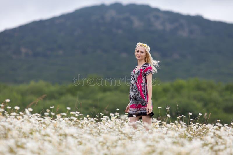 Portrait de fille mince dans la robe légère dans le domaine de camomille contre la montagne photographie stock