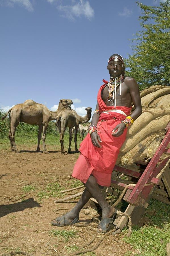 Portrait de guide de safari de guerrier de masai dans la toge rouge traditionnelle et ses chameaux à la garde de faune de Lewa au photographie stock libre de droits