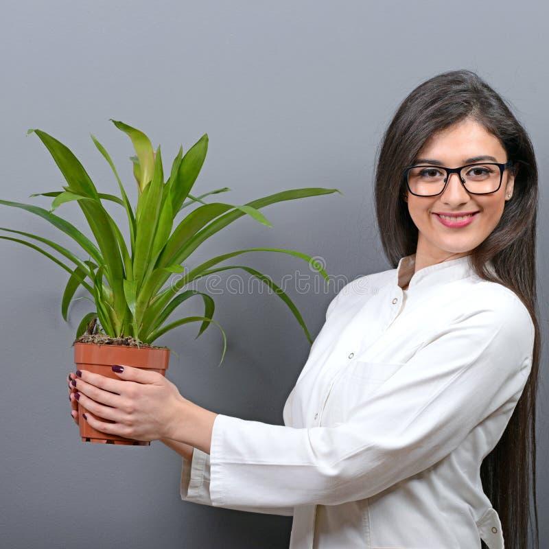 Portrait de jeune femme de botaniste à l'usine de participation d'uniforme sur le fond gris image stock