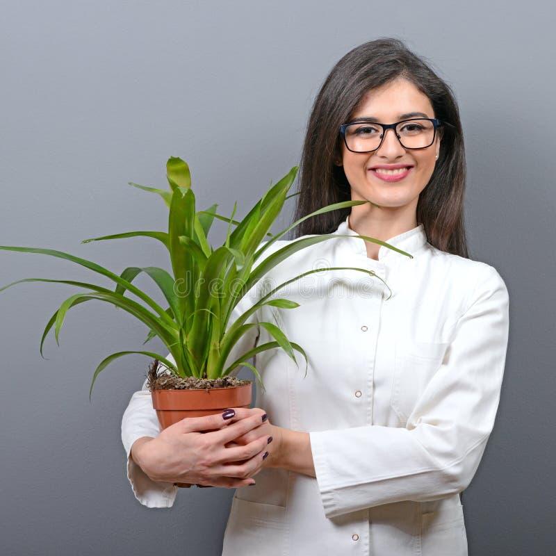Portrait de jeune femme de botaniste à l'usine de participation d'uniforme sur le fond gris photos stock