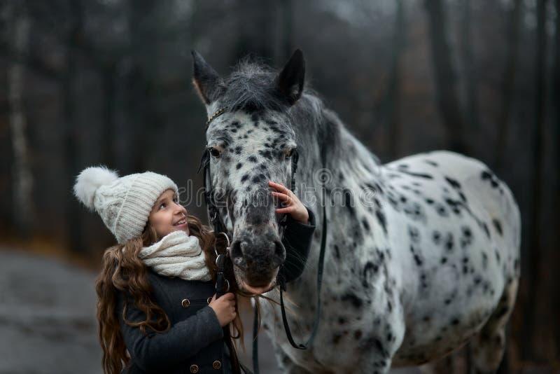 Portrait de jeune fille avec le cheval d'Appaloosa et les chiens de Dalmate photo libre de droits