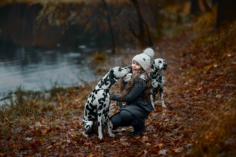 Portrait de jeune fille avec ses chiens dalmatiens image stock