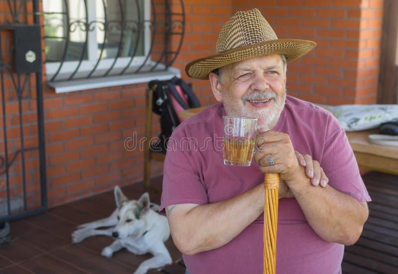 Portrait de l'homme supérieur de sourire barbu tenant le verre de thé photographie stock libre de droits