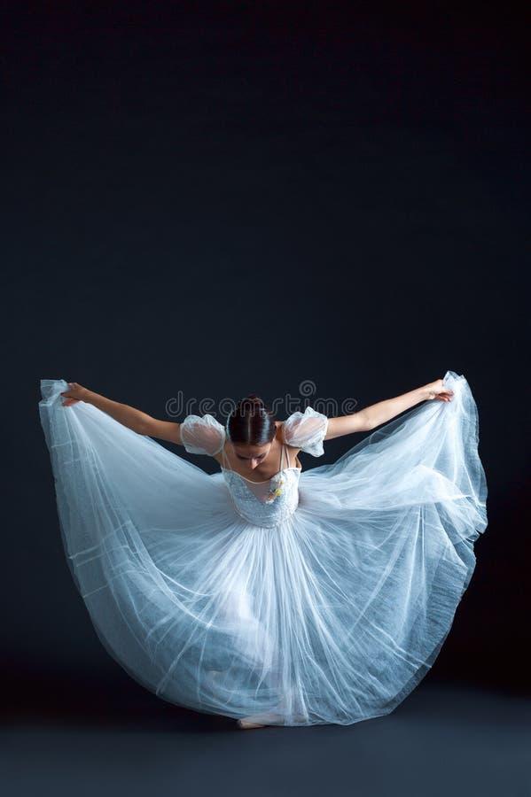 portrait de la ballerine classique dans la robe blanche sur le fond noir photo stock image. Black Bedroom Furniture Sets. Home Design Ideas
