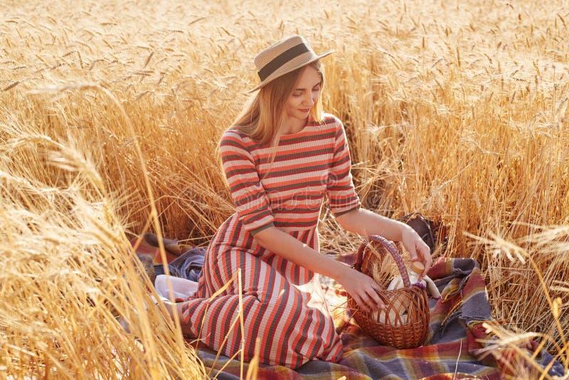 Portrait de la jeune dame tendre attirante passant seul le temps au champ de blé, se reposant sur la couverture, panier émouvant  photos libres de droits