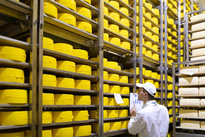 Portrait de la position d'inspecteur dans le d?partement de production de l'usine de laiterie et adopter la position de la produc photographie stock libre de droits