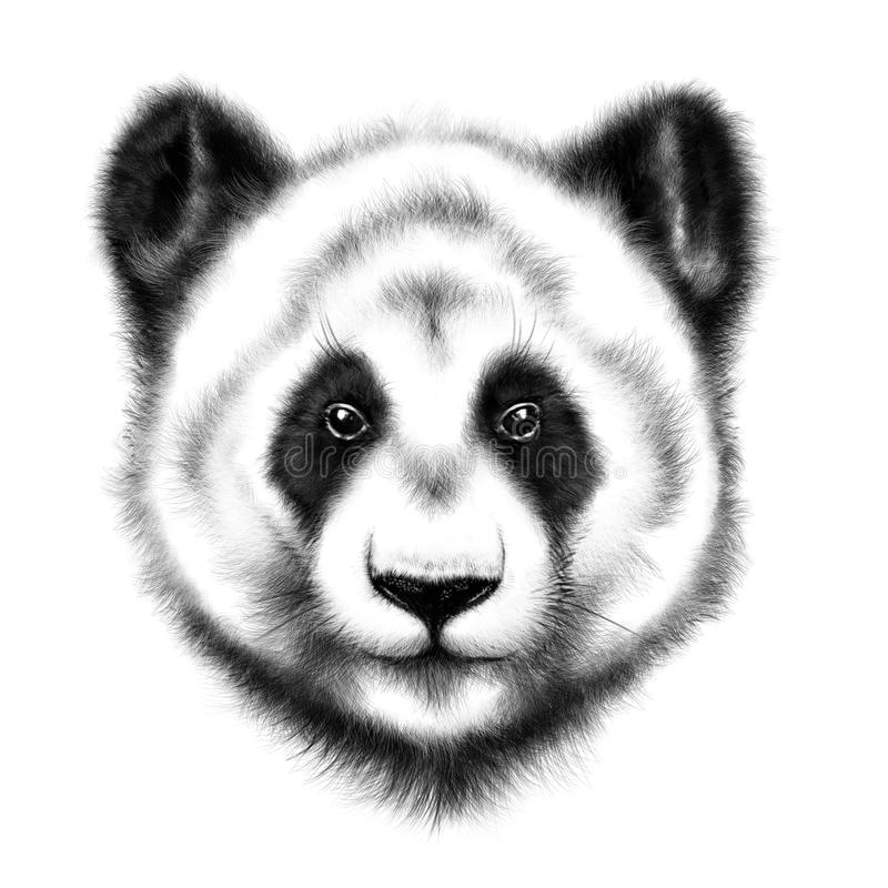 portrait de Main-dessin d'un panda illustration stock