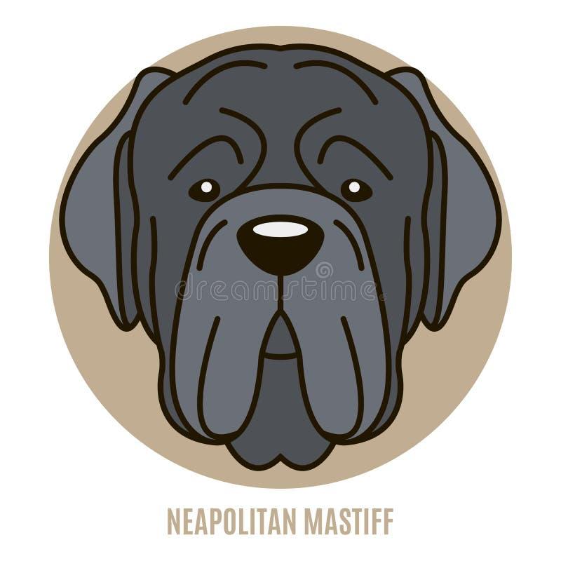 Portrait de mastiff napolitain illustration libre de droits