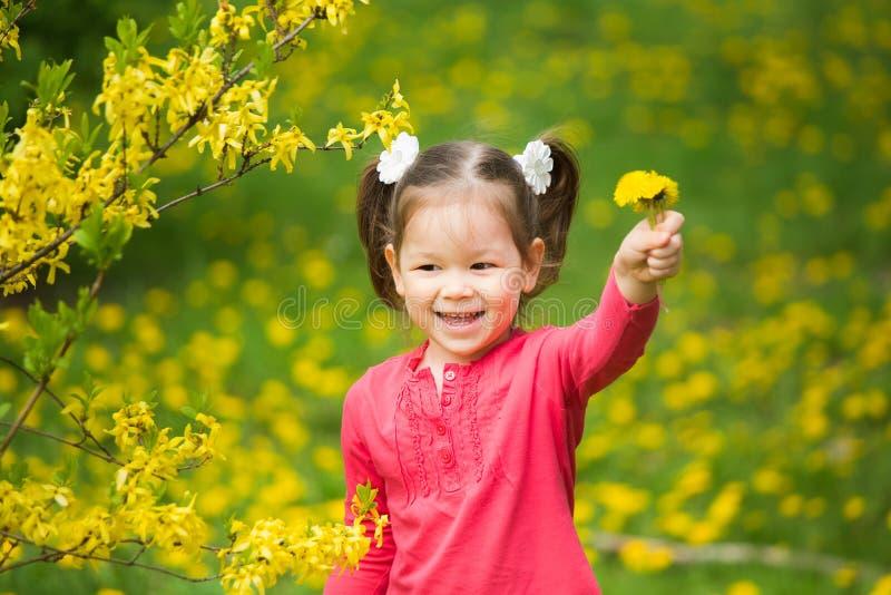 Portrait de petite fille funy avec les pissenlits jaunes à disposition image stock