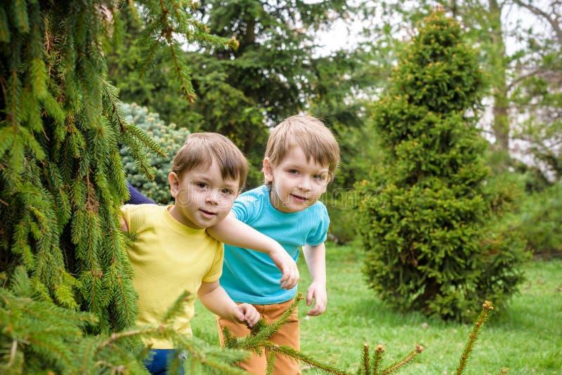 Portrait de plan rapproché des garçons de petits frères du Caucasien deux riant dehors en parc le jour d'été images libres de droits