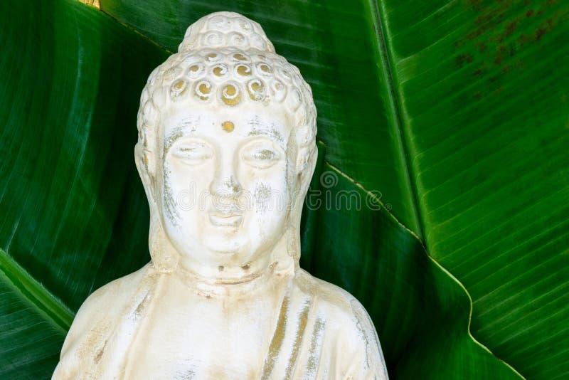 Portrait de statue de Bouddha avec les feuilles vertes fraîches de banane dans la surface de fond avec l'espace libre photo stock