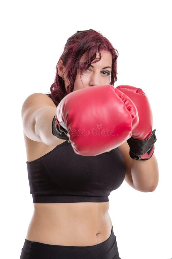 Portrait de studio des gants de boxe de port de femme d'isolement sur le whi photographie stock