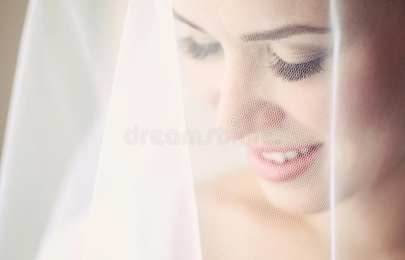 Portrait of a delicate bride royalty free stock photo
