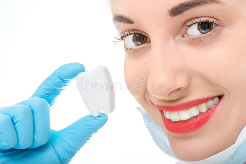 Portrait of dentist with tooth on white background stock photography