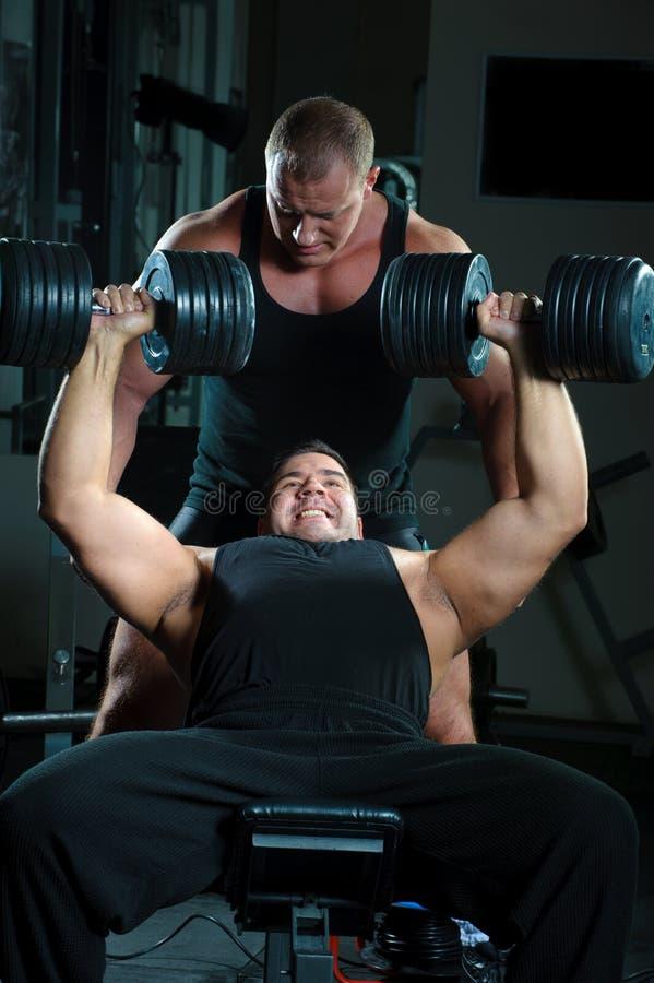 Portrait der Bodybuilder stockbilder