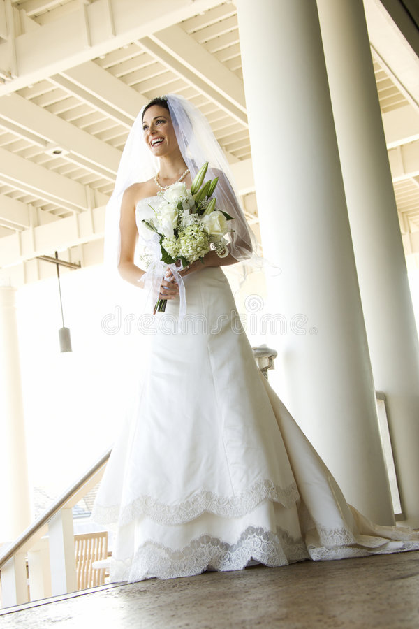 Portrait der Braut. stockbild