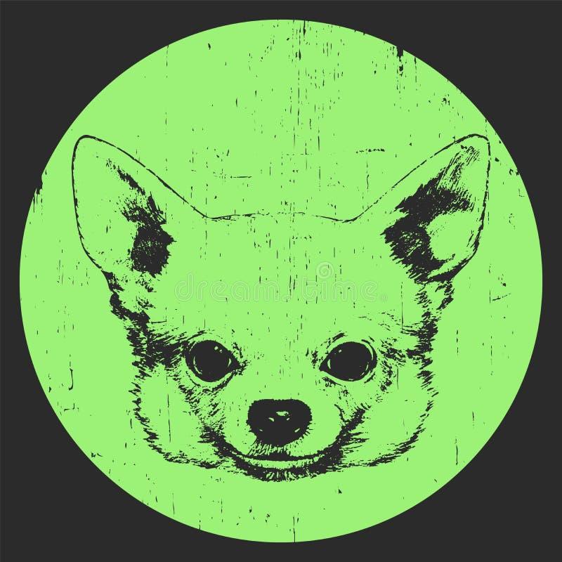 Portrait der Chihuahua Von Hand gezeichnet Gesicht der illustration stock abbildung