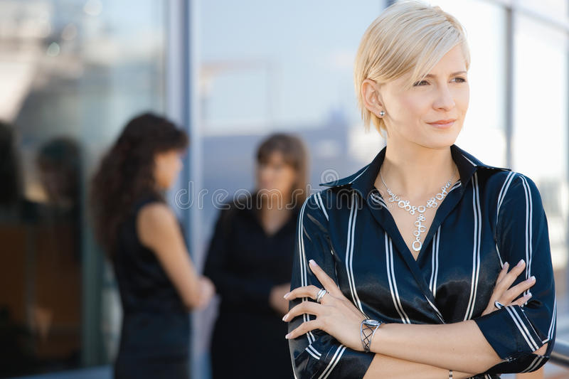 Portrait der Geschäftsfrau stockbilder