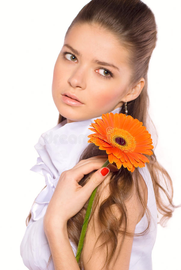 Portrait der schönen reizvollen jungen Frau mit gerber lizenzfreie stockbilder