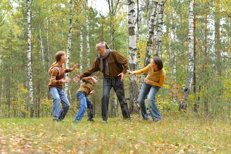 Portrait der vierköpfigen Familie, die im Herbstwald Spaß haben stockbilder