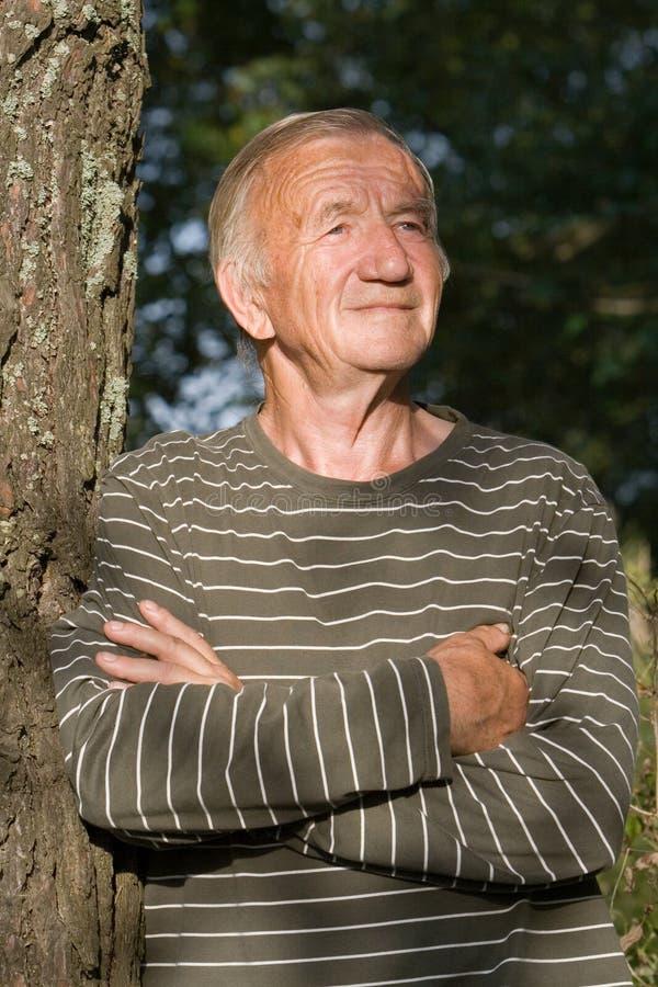 Portrait des älteren Mannes stockbilder